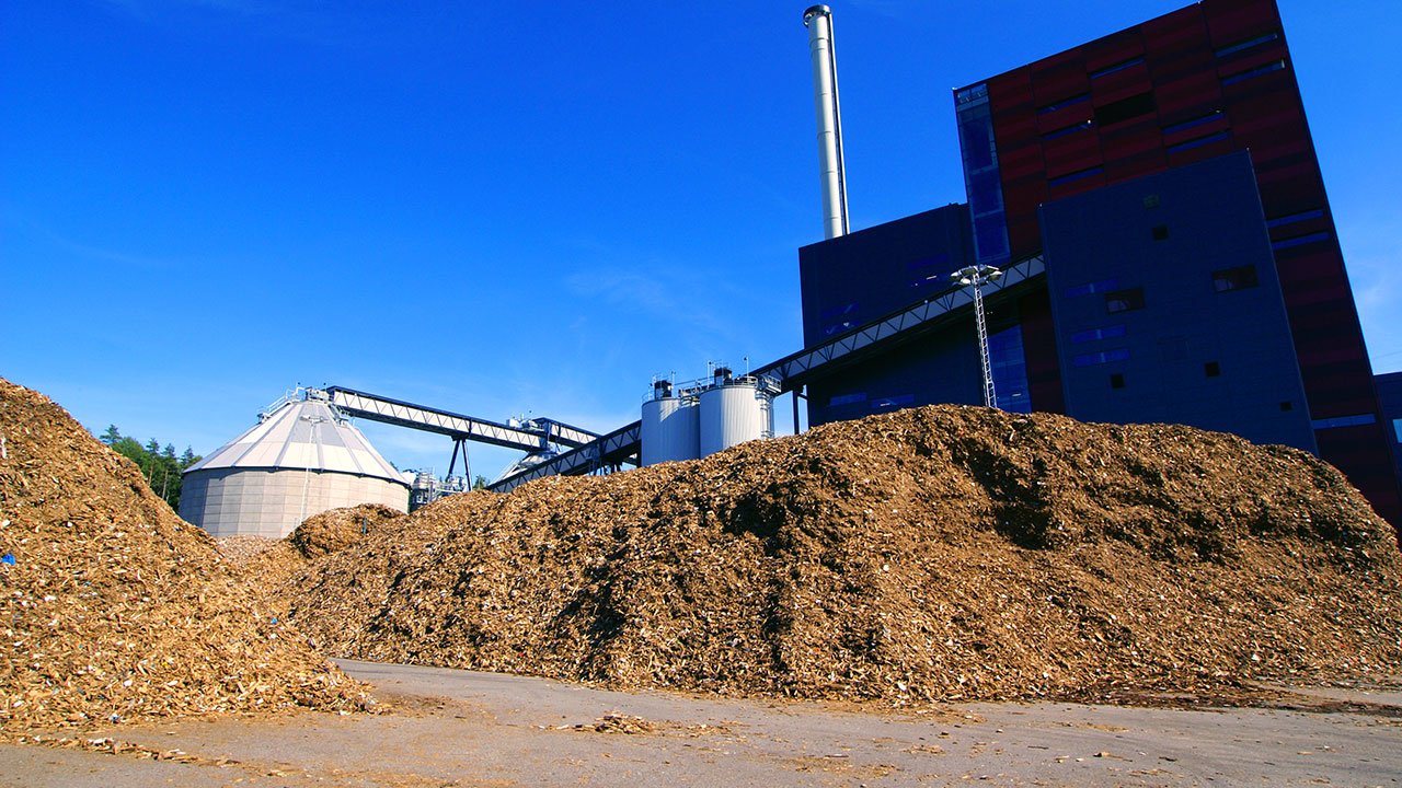 Biomass Consultancy Ramboll Group