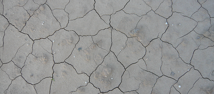 Dried out seabed