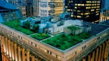 Green rooftops in Chicago