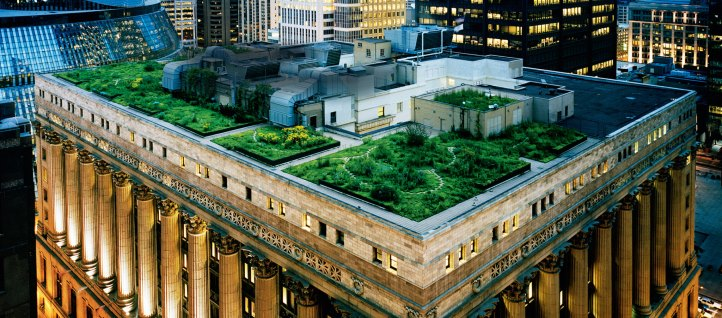 Chicago reduces cooling costs with green roofs